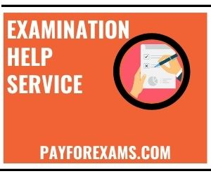 Examination Help Service